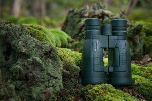 jagdfernglas-31