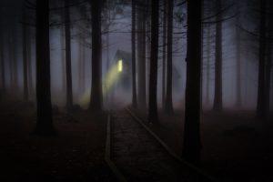 nachtsichtgeraet-jagd-123